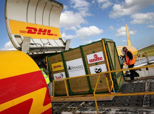 chuyển phát nhanh DHL sang Hàn Quốc (Korea)